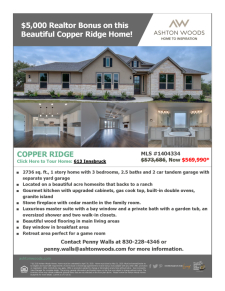 Beautiful Copper Ridge Home Ready for Immediate Move-In
